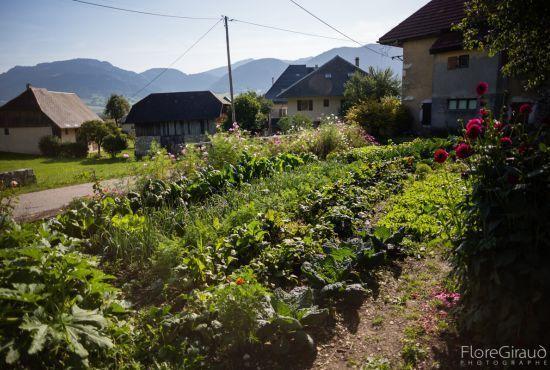 Apéro-débat : Savoirs du jardin potager dans le massif des Bauges.